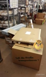 Pokemon in the admin's storage area